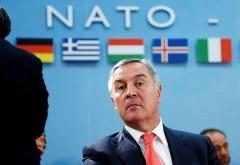 Черногория решила вступить в НАТО