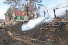 Путин поручил помочь пострадавшим от пожаров в Иркутской области и Бурятии