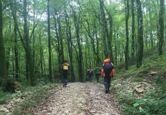 Сочинские спасатели помогли мужчине, потерявшемуся в лесу