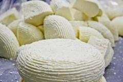 В Адыгее станут активнее защищать права производителей адыгейского сыра
