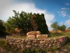 Каждый 8 объект археологического и культурного наследия России находится на Дону