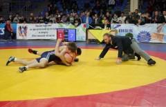 Турнир «Приз братьев Самургашевых» принес донским спортсменам четыре медали