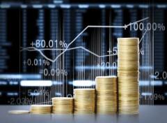 Темп роста инвестиций Курганинского района Кубани за год увеличился почти на 50%