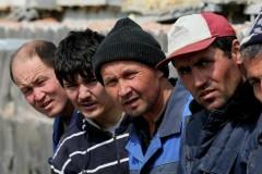 С территории Абинского района выдворено 14 нелегальных мигрантов