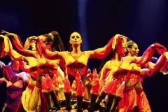 В Сочи пройдет турецкий античный фестиваль-шоу «Огни Анатолии»