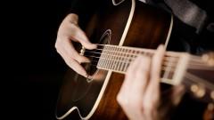 На Кубани 20-летний мужчина украл гитару в личных целях