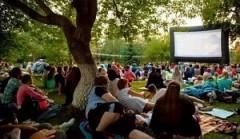 На Кубани состоится IV Международный Фестиваль уличного кино