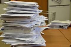 На Кубани треть обращений граждан в администрацию было разрешено положительно