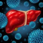 В Краснодаре сорстоится новое занятие «Школы гепатита»