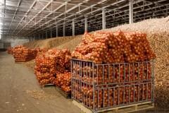 На Кубани открыли новое овощехранилище