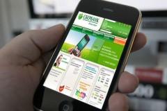 Житель Элисты «угнал» через «мобильный банк» деньги своего родственника
