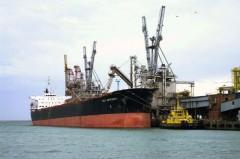В порту Новороссийска изъяли свыше 2 тонн контрафактного моторного масла