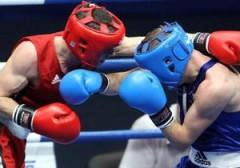 В Ростовской области пройдет Всероссийский юношеский турнир по боксу