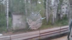 «Томского стрелка» обезвредили женщина-почтальон, велосипедист и прохожий