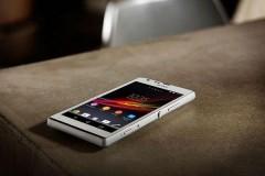 В Черноземельском районе Калмыкии раскрыта кража телефона