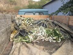 Донские пограничники задержали браконьеров с уловом на 400 тысяч рублей (видео)