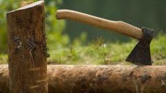 На Ставрополье мужчина незаконно вырубил лесные насаждения на 45 тысяч рублей