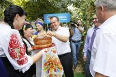 Урожай на Кубани оценен в 321,2 миллиарда рублей