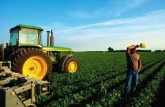 На развитие сельхозкооперации Кубани выделят 1 миллиард рублей