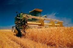 Минсельхоз Кубани: аграриям пора объединиться