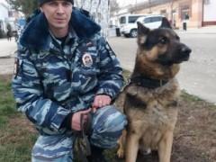 В Крымском районе Кубани служебная собака помогла раскрыть кражу мопеда