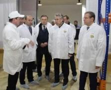 Ростовская область увеличит производство мяса индейки