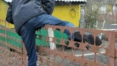 Полицейскими Моздока раскрыта кража с дачного участка
