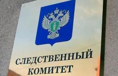 Следствие проверит информацию об истязании мальчика в приюте в Новоалександровском районе Ставрополья