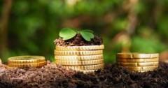 Кубань наращивает объемы господдержки фермерских хозяйств