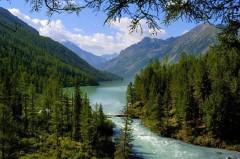 Алтай и Тамбовский край – самые экологичные регионы России