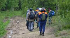В Неберджаевской найден мальчик, пропавший в лесу на соревнованиях по спортивному ориентированию