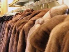 На должностных лиц Московской таможни завели уголовное дело