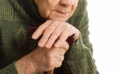 В Элисте задержали подозреваемого в краже денег у 77-летней пенсионерки