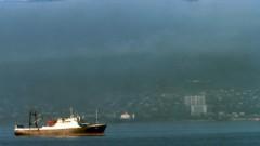 В Новороссийске эксперты Форума сотрудничества пограничных ведомств/ береговых охран прибрежных стран Черноморского региона обсудили обновленные возможности автоматизированной системы обмена информацией