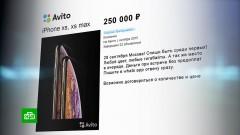 Россияне продают место в очереди за новым iPhone за 250 тысяч рублей