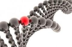 Российские ученые открыли редкую мутацию, способную разрушать органы детей