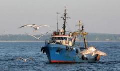 В Китае затонуло рыболовное судно, экипаж пока не найден