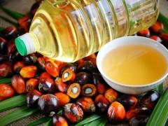 Пальмовое масло вошло в ТОП-3 наиболее часто импортируемых продуктов питания