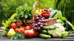 В 1,4 раза больше сельскохозяйственной продукции выпущено в Краснодаре за этот год