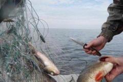 На Кубани троим браконьерам, оказавшим сопротивление пограничникам, грозит уголовное наказание