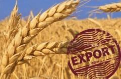 В Краснодарском крае планируется наращивание экспорта зерна