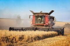 Больше миллиарда — фермерам Кубани