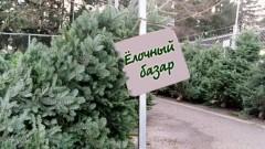 370 елочных базаров будет организовано в регионе перед новогодними праздниками
