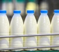 Молочная отрасль добавляет 45 млрд рублей в ВВП Кубани ежегодно