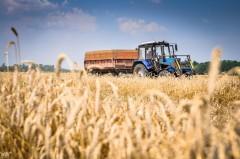 Агропромышленный комплекс Кубани в 2019 году получит больше 6 миллиардов рублей