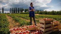 По программе «Малый сад» в этом году более 30 фермеров получили гранты