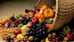 К 2021 году ожидается повышение урожайности плодов на Кубани