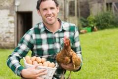 Краснодарские фермеры в этом году произвели больше собственной продукции