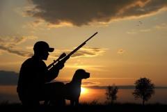 В приграничной зоне в Ростовской области на 5 лет запретили охоту