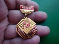Звание «Ветеран труда» получили еще 119 жителей Дона
